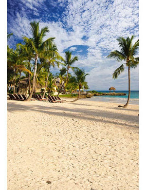 Tropical Sand Beach With Coconut Trees Backdrop For Children Photography F-2616