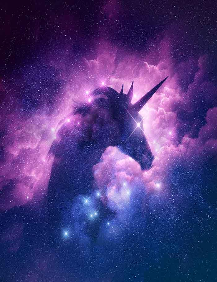Unicorn Silhouette In Galaxy Nebula Cloud Photography ...