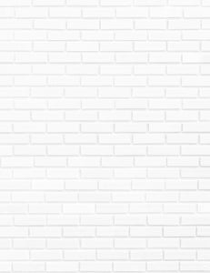 White Paint Brick Wall Photography Backdrop J-0689