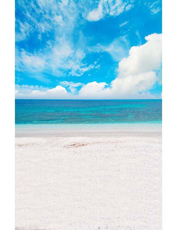 White Sandy Beach Calm Sea With Beautiful Sky Photography Backdrop  F-2635