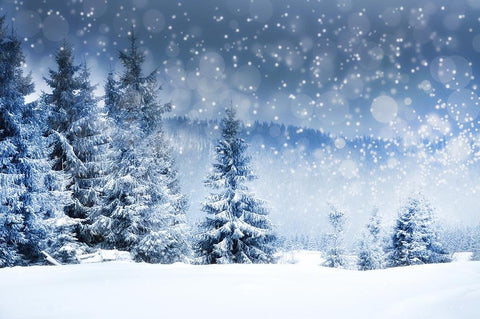 Winter Snow Covered Fir Tree Photography Backdrop N-0026