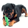 Dog Dental Care Toothbrush-bristly k-9 teeth cleaner stick-The Exceptional Store