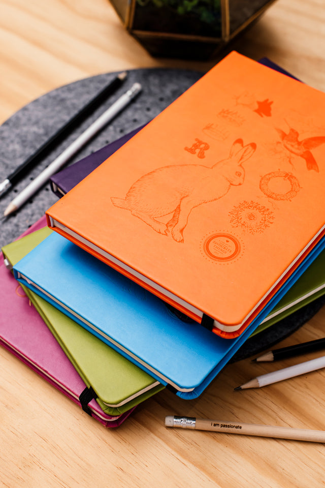 notebook colourful
