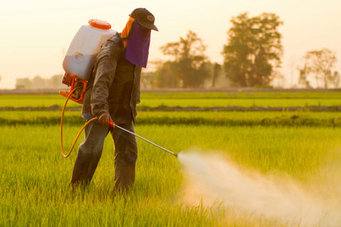 A local farmer spraying chemicals in southern Bhutan