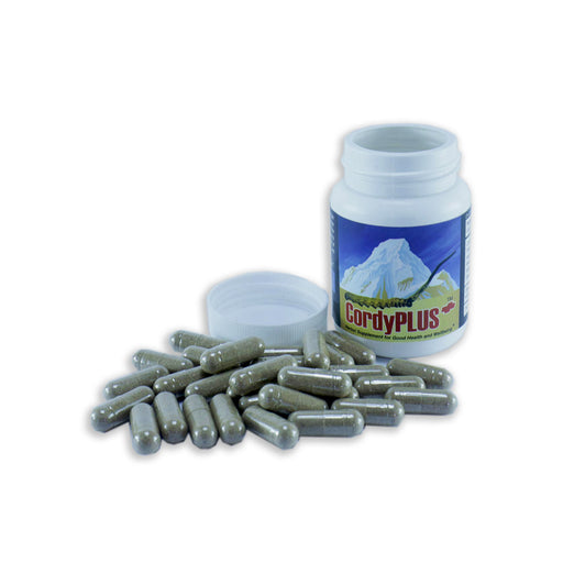 cordyplus Bhutan | Bhutan herbal supplements