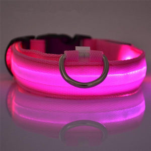 LED Dog Collar Rechargeable - Perfenq