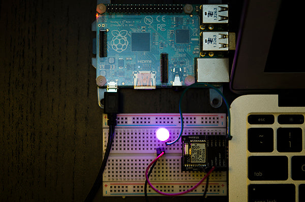 Blue and Red LEDs turned on from the Raspberry Pi over BLE