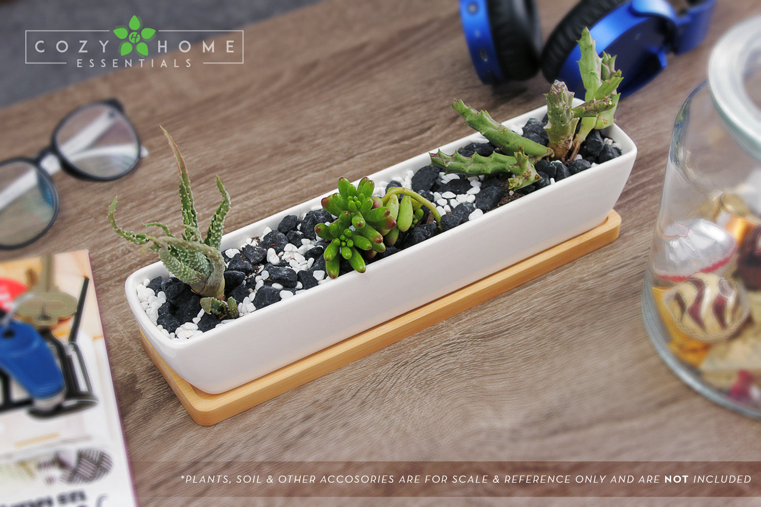 "11"" Long, Rectangle, Mini Succulent Planter Centerpiece with Succulent Plants on Table"