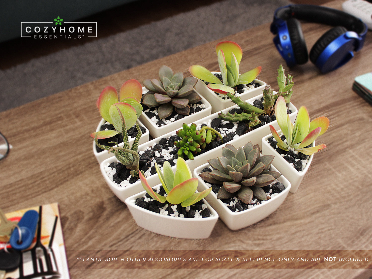 Set of 7 Multi-Combination Mini Succulent Planters