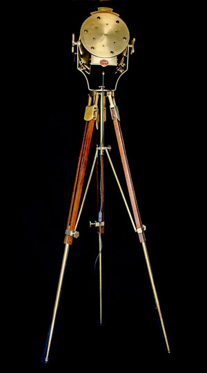 Dumpy level tripod lamp with spot light on top rear view
