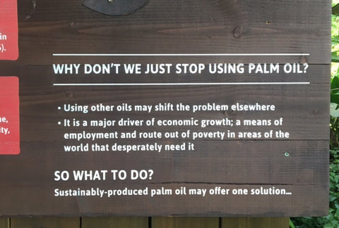 Our view on palm oil Beauty Kubes
