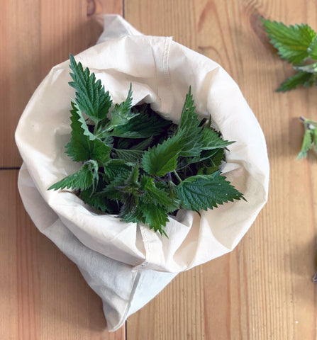 Nettle soup health benefits of nettles for hair and skin