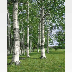 DIY Birch Tree Forest Paint By Numbers Kit - Painting By Numbers Kit - Artwerkes
