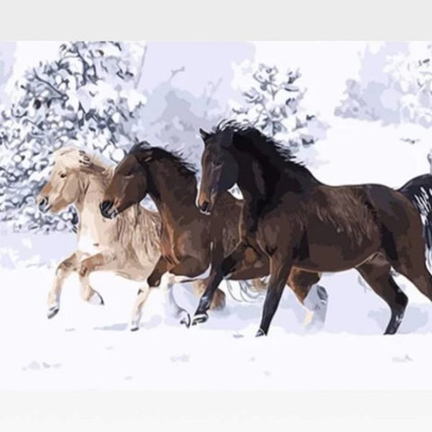 Image of DIY Snow Horses Paint By Numbers Kit Online - Painting By Numbers Kit - Artwerkes