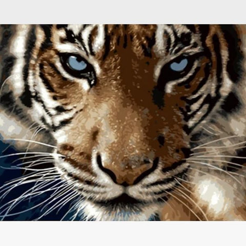 Image of DIY Tiger Paint By Numbers Kit -The Don - Painting By Numbers Kit - Artwerkes
