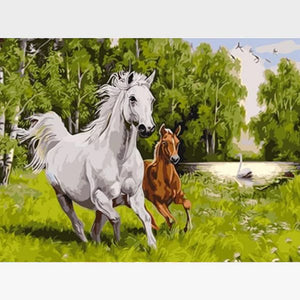 DIY White Horse Paint By Numbers Kit Online  - Brigadier - Painting By Numbers Kit - Artwerkes