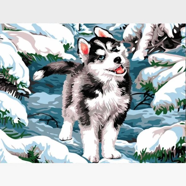 Husky Puppy Paint By Numbers Kit - Painting By Numbers Kit - Artwerkes