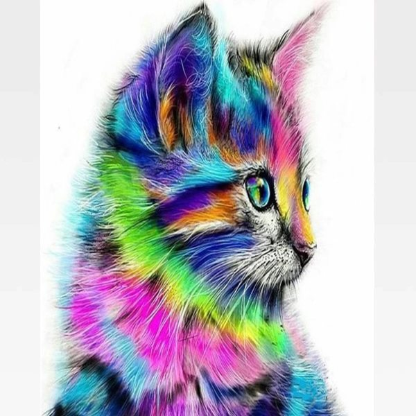 Paint By Numbers Rainbow Cat - Painting By Numbers Kit - Artwerkes