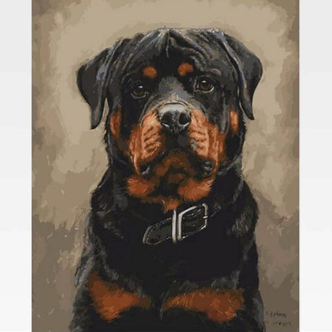 Rottweiler Paint by Numbers Kit - Painting By Numbers Kit - Artwerkes