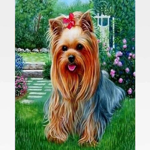 Yorkshire Terrier Dog Paint By Numbers Kit - Painting By Numbers Kit - Artwerkes