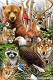 Animal Magic : America  by Howard Robinson | Diamond Painting - Treasure Studios Art