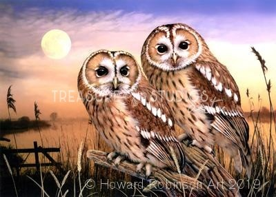 Tawny Owls : by Howard Robinson | Diamond Painting - Treasure Studios Art