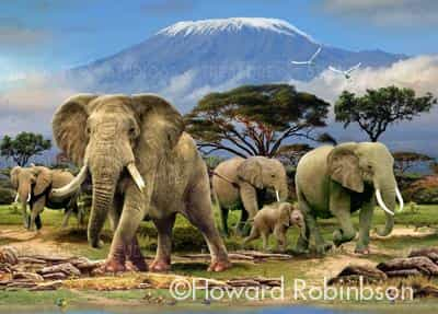 Kilimanjaro morning by Howard Robinson | Diamond Painting