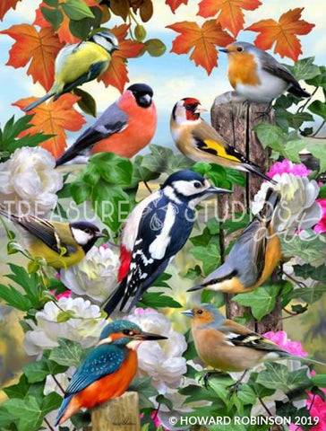 Birds of all Seasons by Howard Robinson | Diamond Painting - Treasure Studios Art