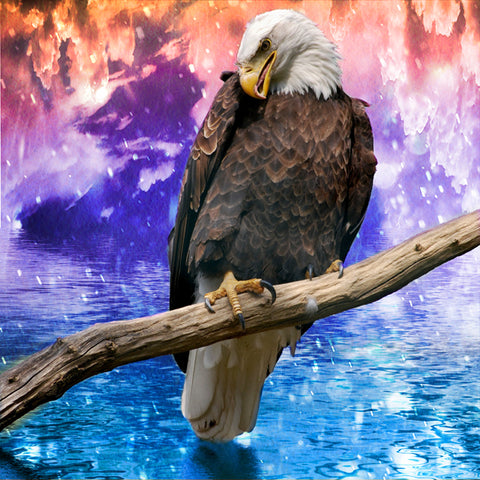 Bald Eagle Spectacular | Diamond Painting - Treasure Studios Art