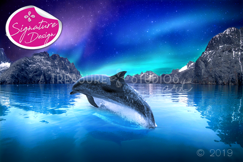 Aurora Borealis Dolphin Lights | SIGNATURE |  Diamond Painting - Treasure Studios Art