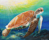 Green Sea Turtle by Debra Dickson | Diamond Painting