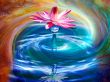 Lotus Lily of Color | Diamond Painting - Treasure Studios Art