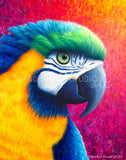 PARADISE! Macaw Parrot by Rachel Froud | Diamond Painting - Treasure Studios Art
