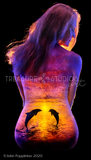 Sunset Dolphins by John Poppleton | Diamond Painting - Treasure Studios Art