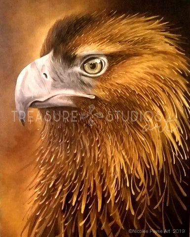 Hawk Eye by Nicolee Payne | Diamond Painting - Treasure Studios Art