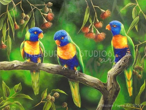 Three Little Lorikeets by Nicolee Payne | Diamond Painting - Treasure Studios Art