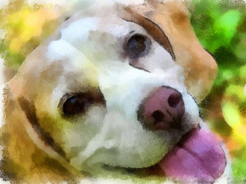 Beagle Love | Diamond Painting - Treasure Studios Art