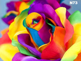 Rose of Color | Diamond Painting - Treasure Studios Art