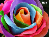 Rainbow Rose | Diamond Painting - Treasure Studios Art
