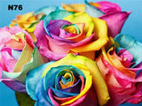 Pastel Roses | Diamond Painting - Treasure Studios Art