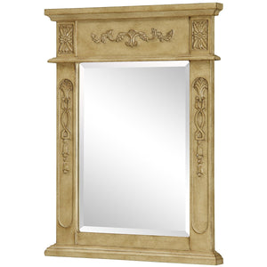 Danville 22 X 28 Traditional Mirror - Antique Beige Finish (Vm-1003) Mirror