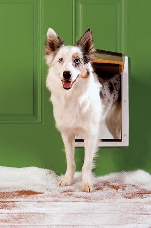 PetSafe Extreme Weather Pet Door - Medium