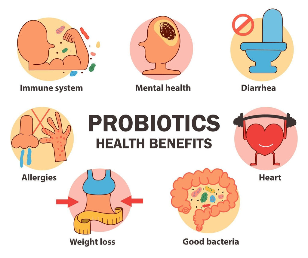 How Long Does It Take Probiotics To Work Dr Ian Stern