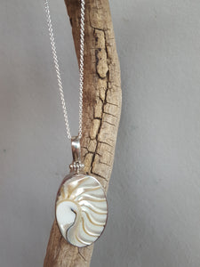 Sterling silver egyptian shell necklace