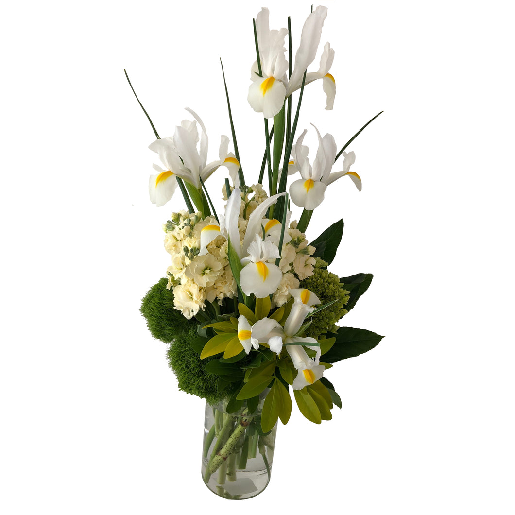 Green and white flowers arranged in high style featuring green hydrangeas, white iris, fragrant stocks and lush greenery arranged in a clear vase.