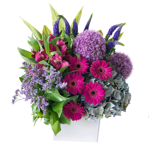 Summer arrangement featuring purple allium flowers, fuschia gerbera daisies, blue hydrangea, and purple veronica arranged in a ceramic white vase in Flower Studio signature style.