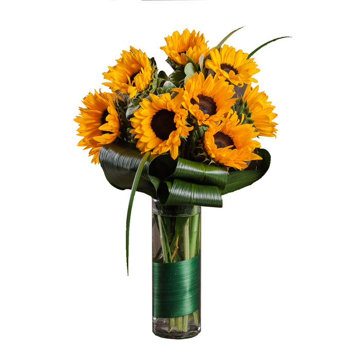 Assortment of beautiful yellow sunflowers arranged with greenery in Flower Studio signature style, feature in clear glass vase with leaf wrap.
