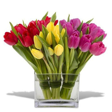 Classic tulips arranged in a clear glass vase and available for flower delivery in St. John's by Flower Studio