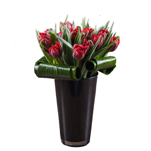 20 stems of premium red tulips arranged with aspidistra leaf wraps in a tall, shiny black vase in Flower Studio signature style.