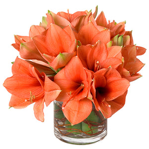 Holiday Christmas flower design featuring all amaryllis arranged in clear glass vase arranged in Flower Studio style.